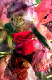 Marie antoinette (Red)