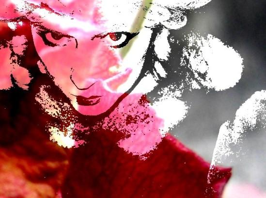 Maire Antoinette (Pink)