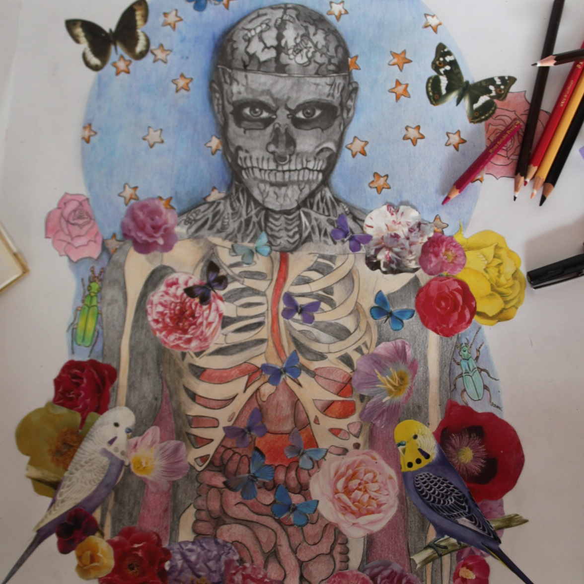 New pencil drawing