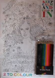 Colouring in Madam Bovary. Two to colour in the pack. £14.00
