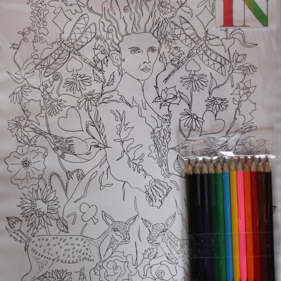 Colouring in Marie Antoinette. Two images to colour in the pack. £14.00