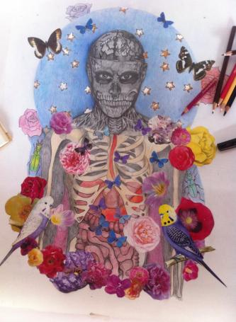 Ribcage and collage