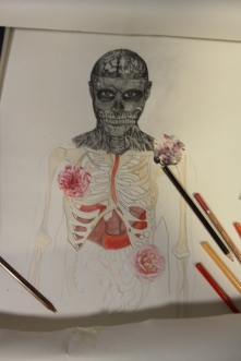 Start of drawing